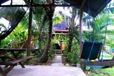 Carpa montada, lista para dormir - Bocas del Toro Province