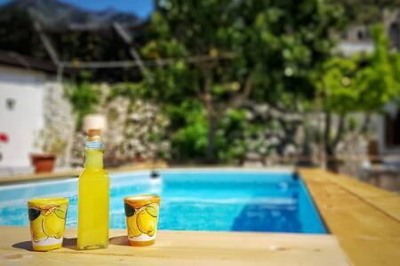 Villa INN Costa T