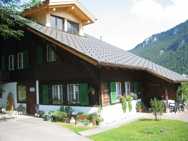 Beautiful Holiday Flat in Meiringen - Meiringen - Apartment