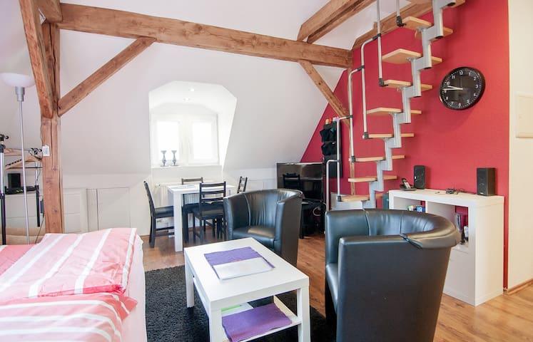 Cosy Ruhrgebiet attic flat