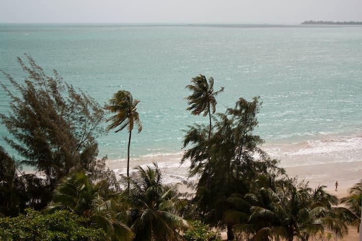 2 BR Beachfront Condo - Isla Verde! - Carolina - Condominio