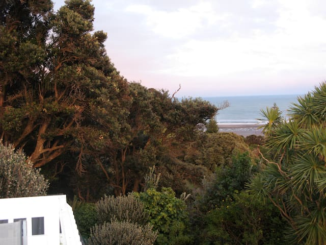 Beach Cottage with beautiful views - Muriwai