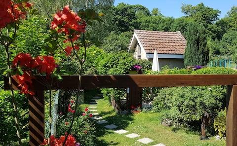 petite maison de jardin autonome