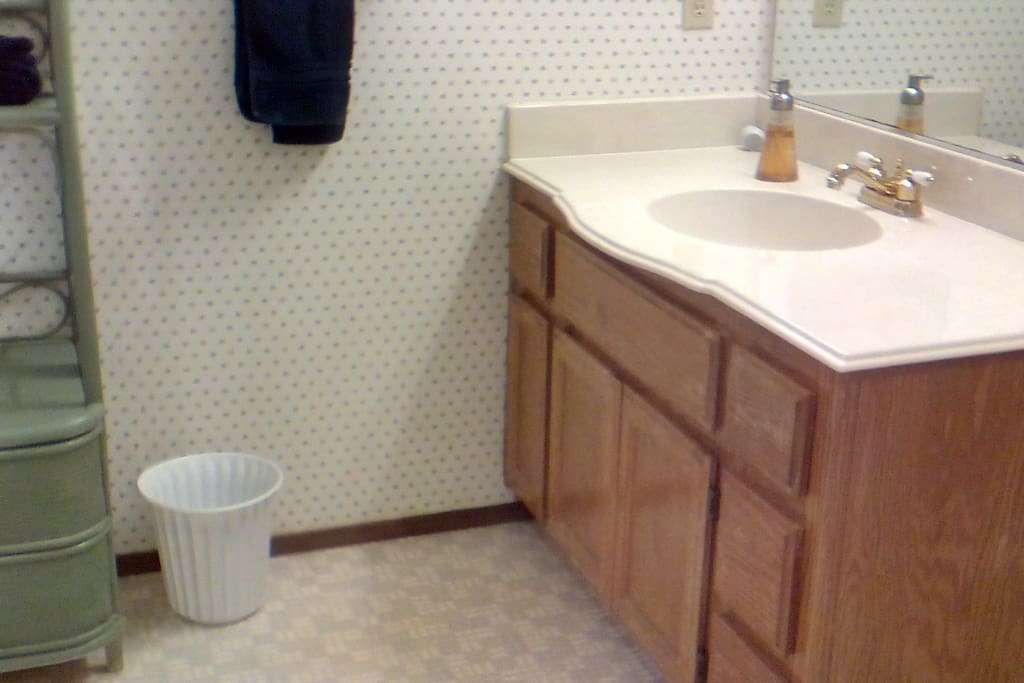 The attached bathroom is spacious with space for your toiletries. A hair dryer is provided.
