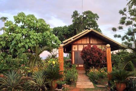 Villa San manuel - Puerto Princesa