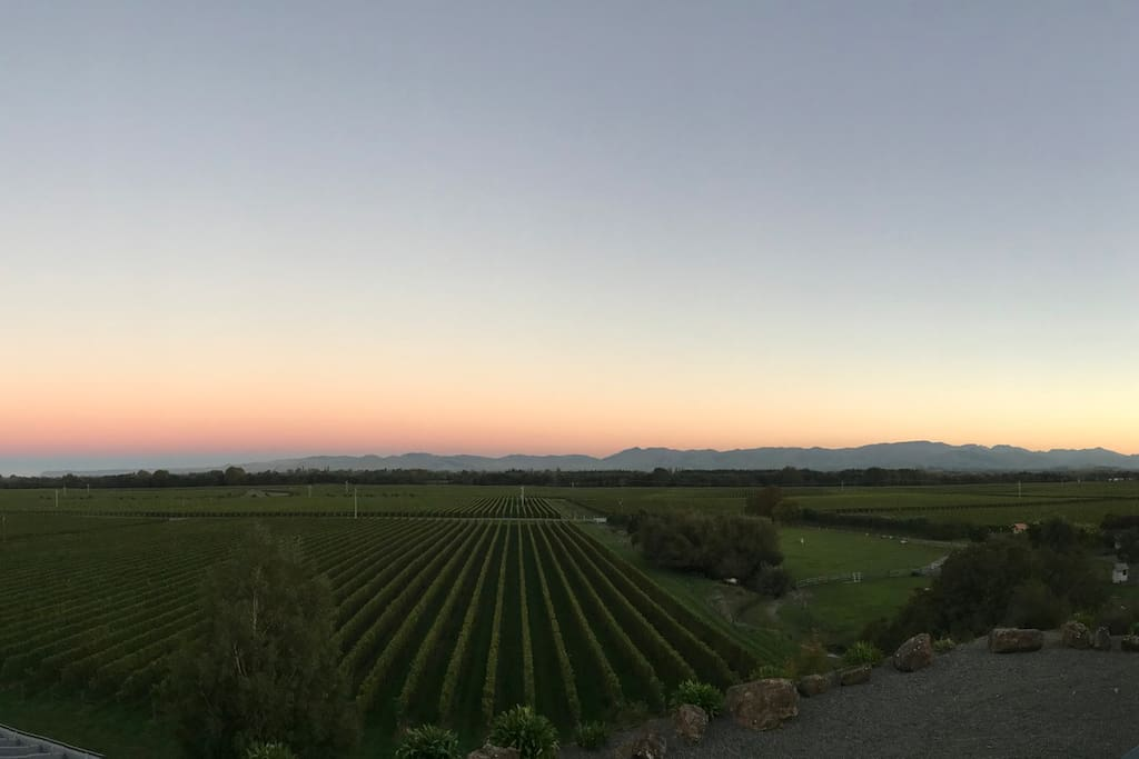 Take in the spectacular views of local vineyards and the Wither Hills