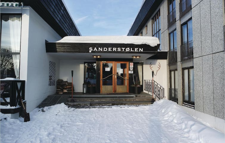 Holiday apartment with 1 room on 26 m² in Tisleidalen