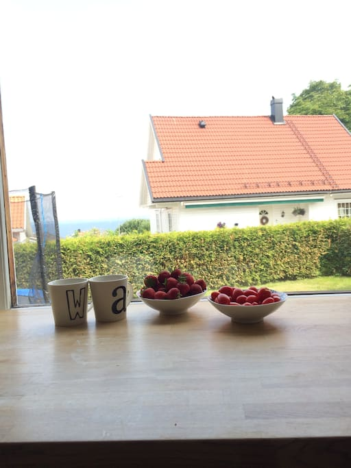 Access to kitchen with nice view