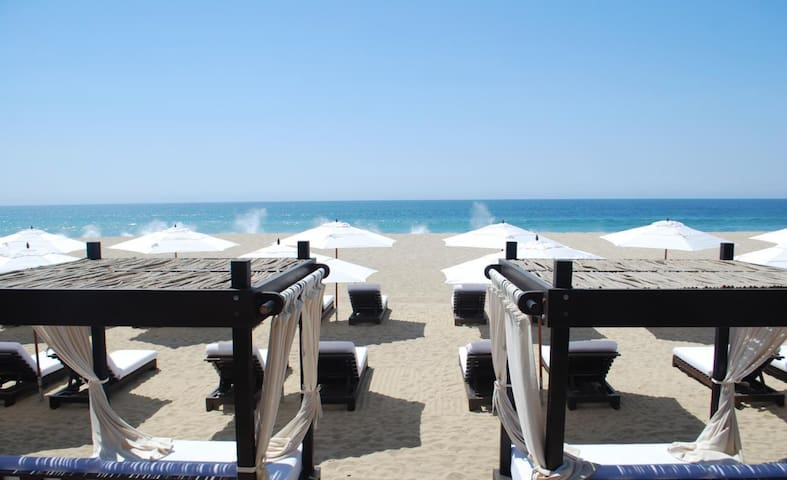 Jr Suite - Resort on the Beach