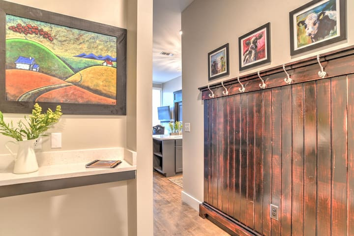New luxury condo located in heart of downtown Asheville~55 South Market #210