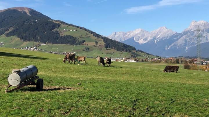 Comfortabel appartement in de bergen | Tirolerhaus