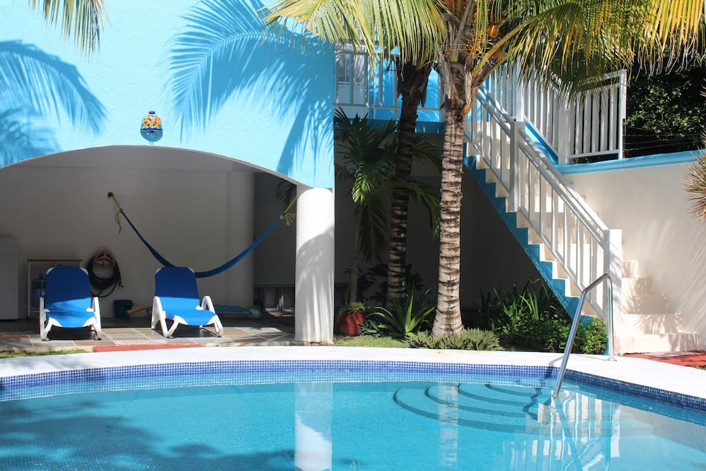 Private Pool and Back Yard Garden.  Lounge Chairs and Hammocks