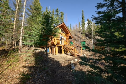 Wilderness Cabin for rent at Little Salmon Lake