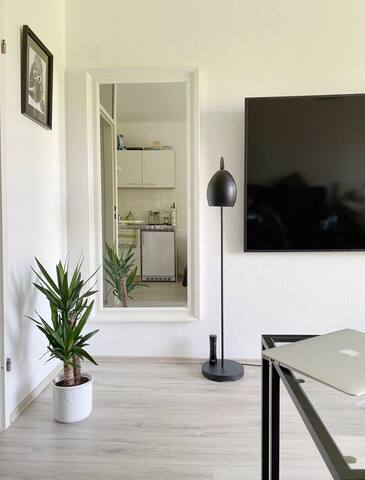 small but cozy apartment near university