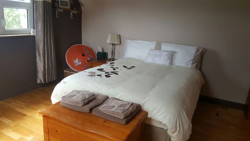 2 spacious double rooms in lovely home - Mayo - บ้าน