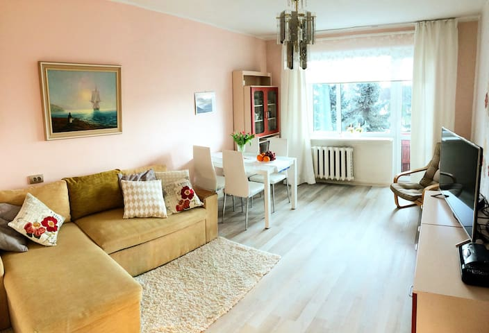 A perfect apartment near the beach + 5 free bikes - Pärnu - Apartemen