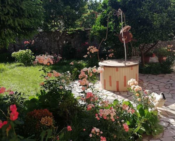 Flowers' Home - Centre