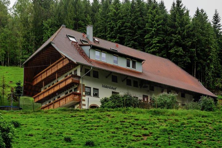Komfortable Ferienwohnung in ruhiger Lage im Schwarzwald mit Balkon