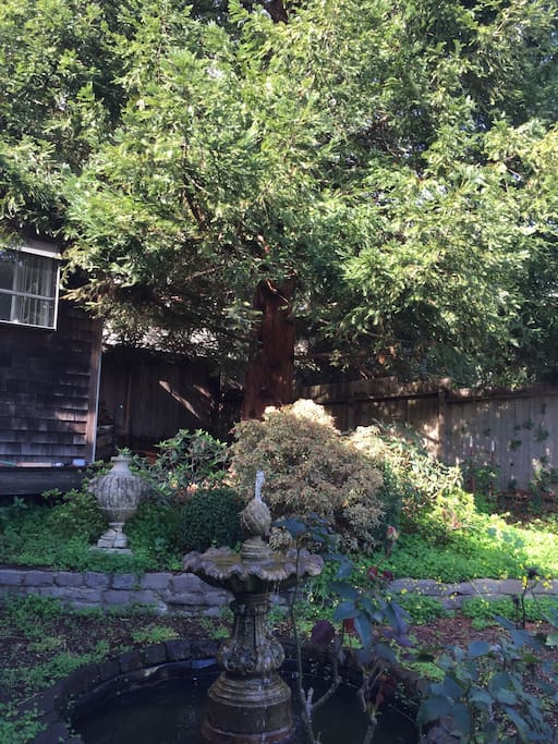 Private front entrance yard with fountain and 100-year old tree