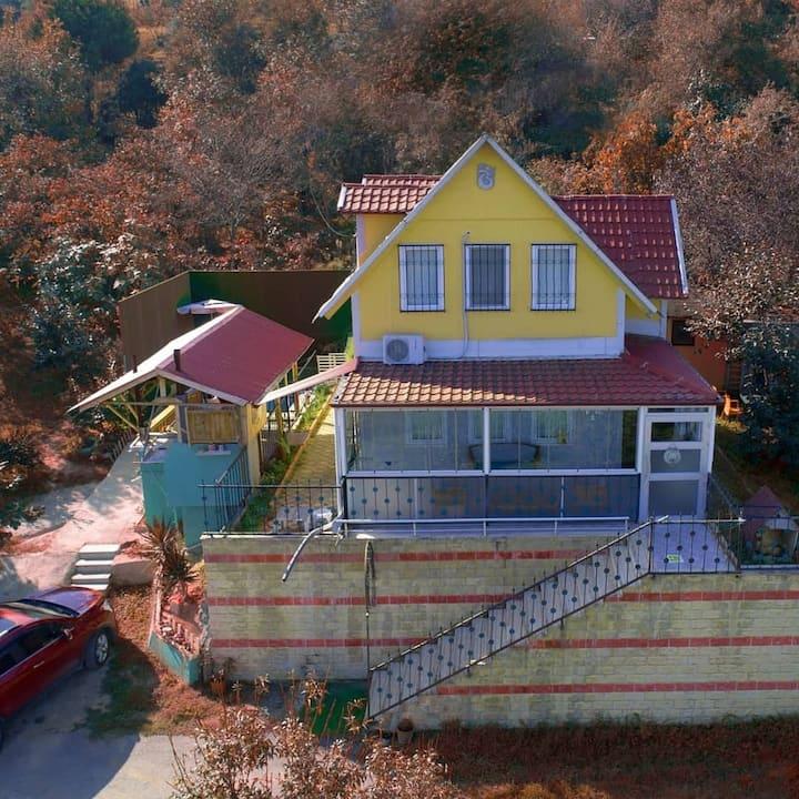 Bahceli villa