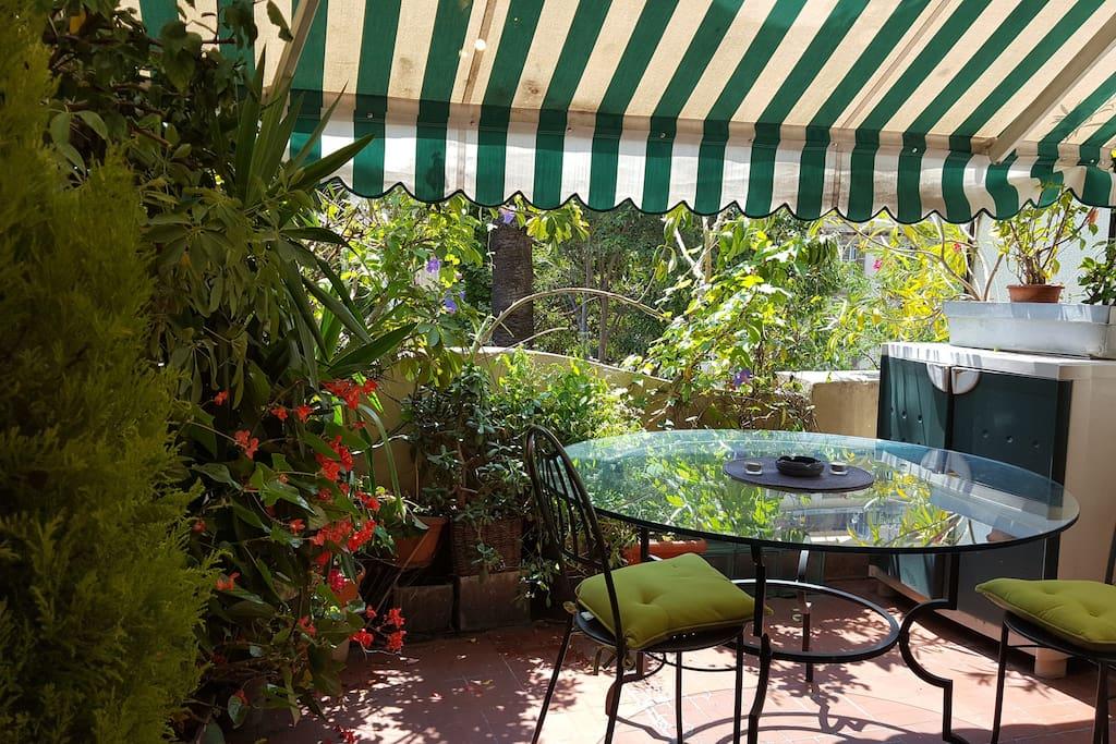 Une terrasse verte et fleurie sans vis-à-vis