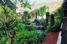 View of garden from the back