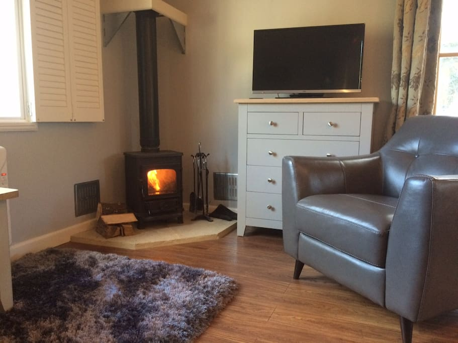 Lounge Area with wood burner