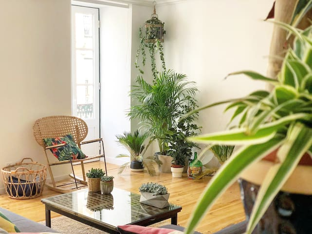 Fauna & Flora Home - quirky  apartment in Madragoa