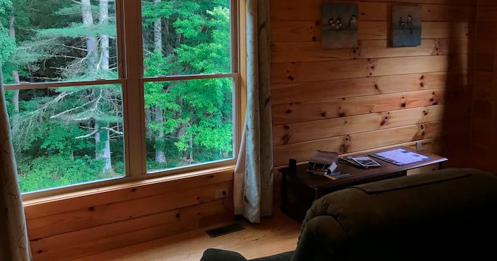 <1mile to Gorge Bridge+Game Rm+Hot Tub. Accessible