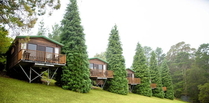 Studio Cedar Cabins in Bilpin