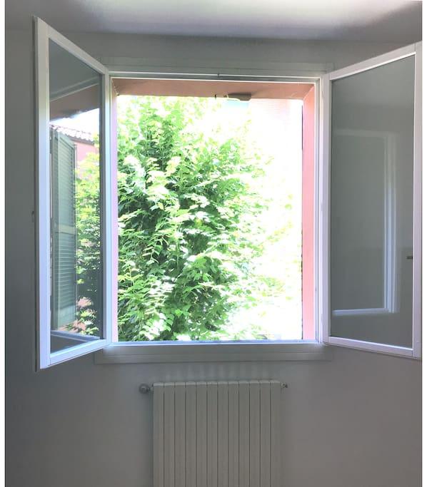 dalla finestra delle prima camera da letto