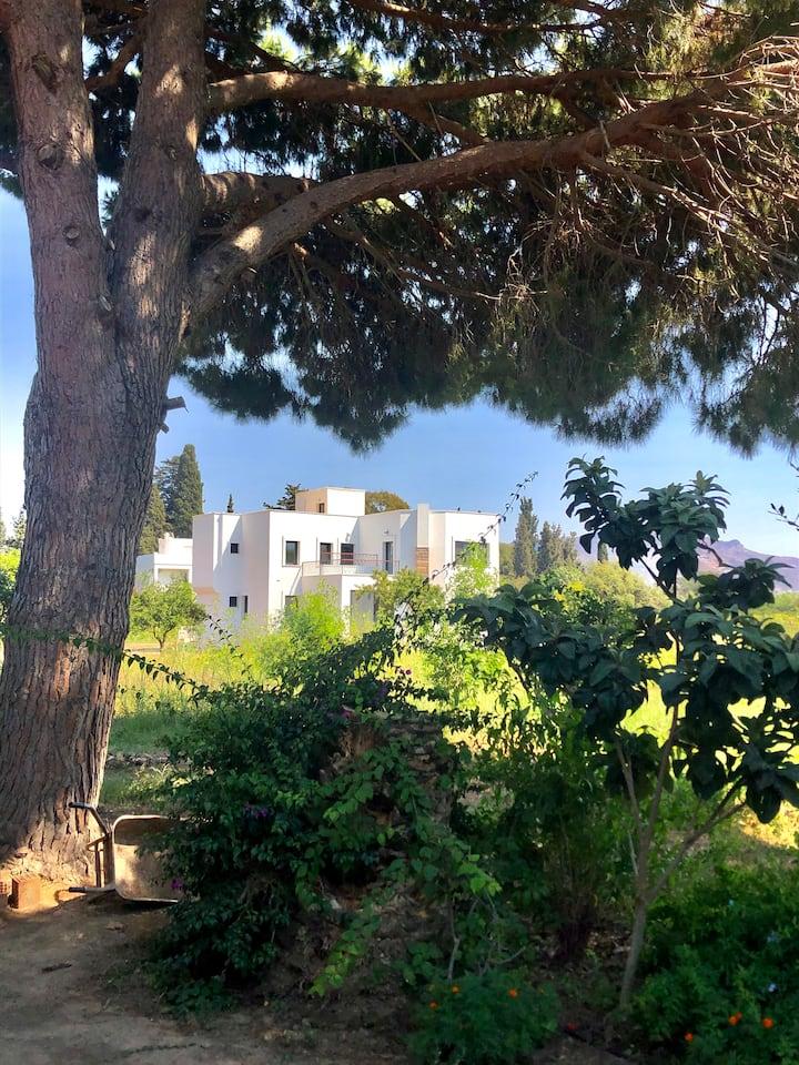Turgutreis brand new home with greenery and view