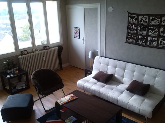 Grand appartement lumineux - Longvic - Lejlighed