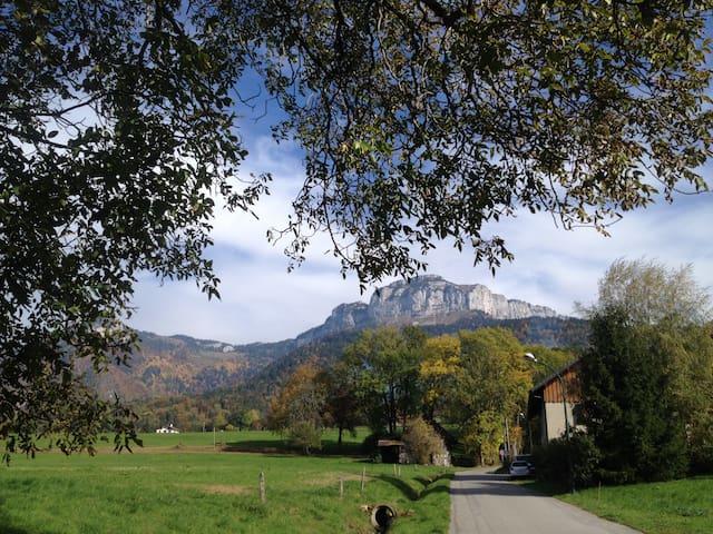 Calme de la montagne à proximité d'Annecy - Villaz - Appartement