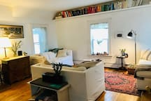 Shared living room with lots of books, plants and beautiful rugs.