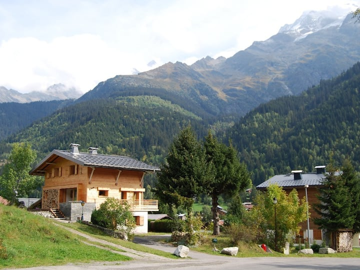 Beautifully renovated Chalet, Ski In / Ski Out