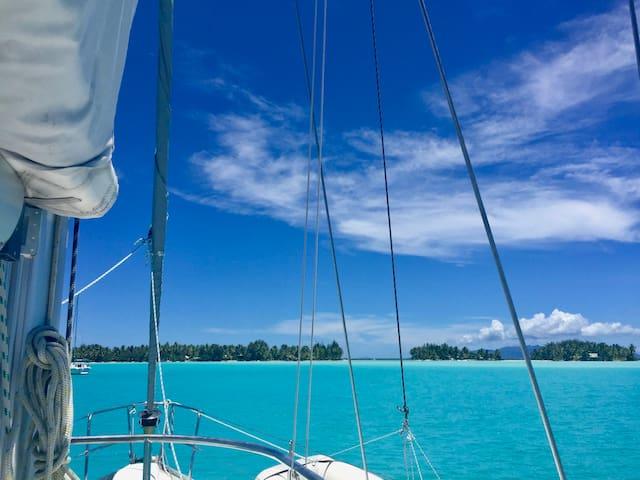 Sailing by Alsouf Croisières