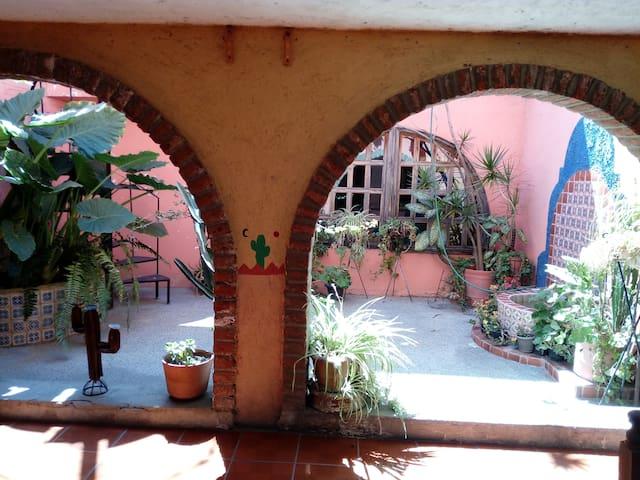 Habitaciones en excelente zona de León, Gto. - León - House
