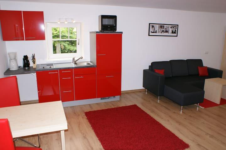 1-Pers.Apartment südlich von Salzburg, gratis WLan - Hallein