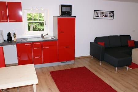 1-Pers.Apartment südlich von Salzburg, gratis WLan - Hallein - Rumah Tamu