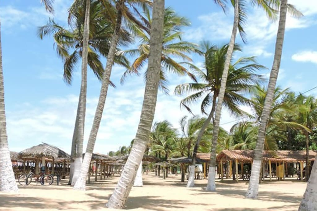 Praia do Lugar Comum - A Praia dos Turistas