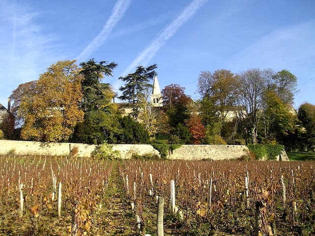 Real Burgundy, off the beaten path - Aluze - Huis