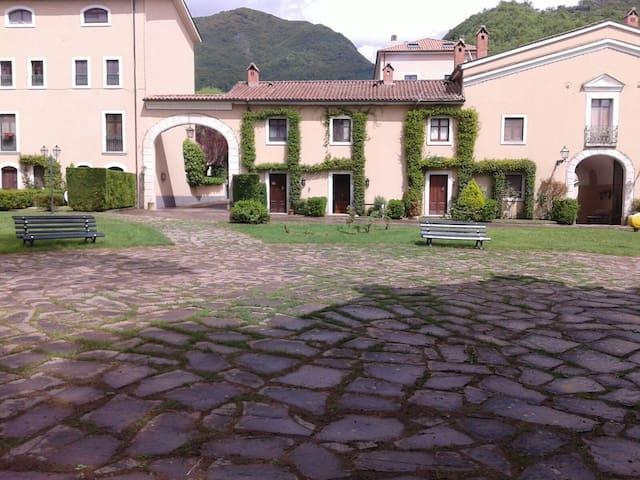 Nice apt with garden
