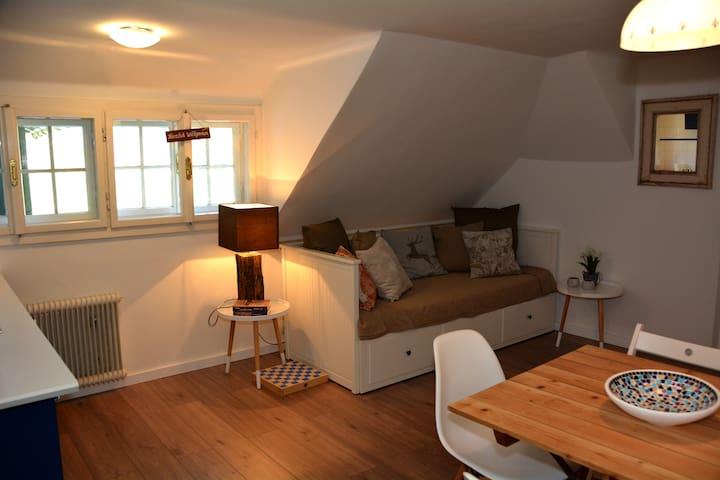"""Appartement """"Almsterndl"""" -Edelweiss - Gosau - Flat"""