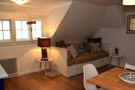 Appartement Almsterndl - Edelweiss - Gosau