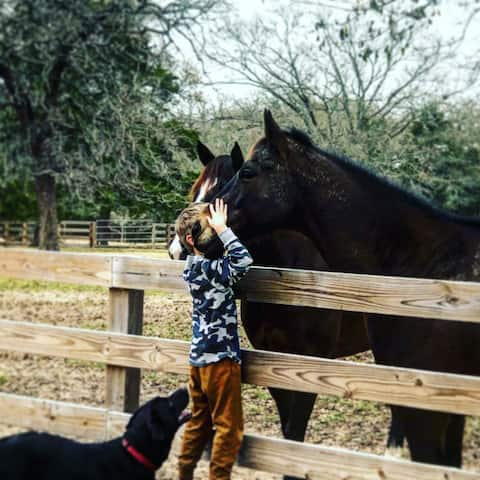 Squash Bug Ranch - escape to the country