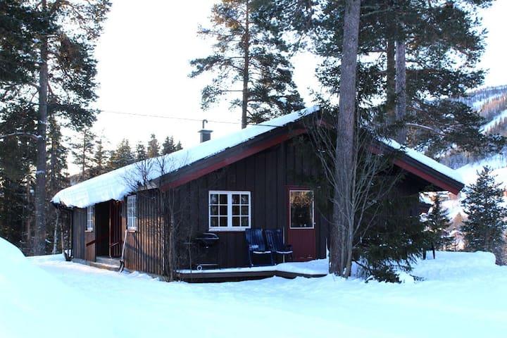 Tveitehaug 3 montain cabin with Wifi and Sauna