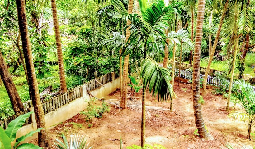 Patnem Beach Jungle Holiday Home F-Top Studio