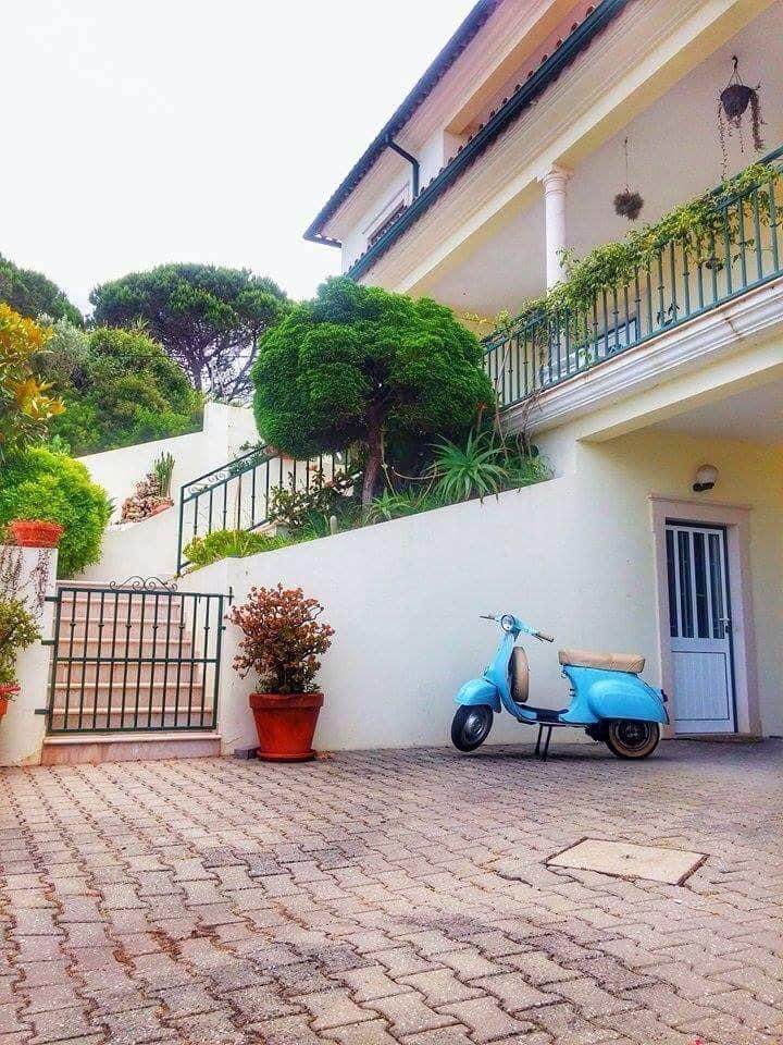 Casa da Avó Bela - Alojamento Local - Quarto Azul