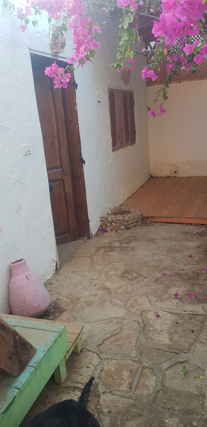 private room / shared house / Dahab